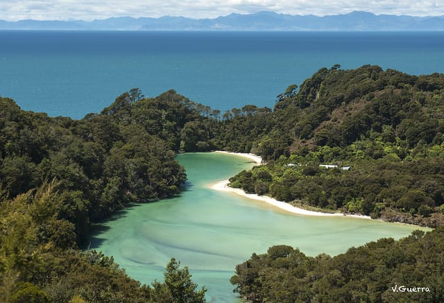 5 Must-Do Activities in Nelson, New Zealand